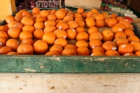 Orange Haven